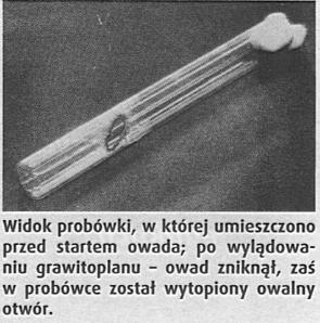 16-wg