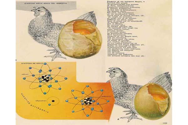 Transmutacja biologiczna - skąd się bierze wapń w jajkach? 2